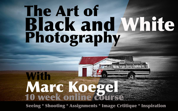 Online course the art of black and white photography 10 week course 395